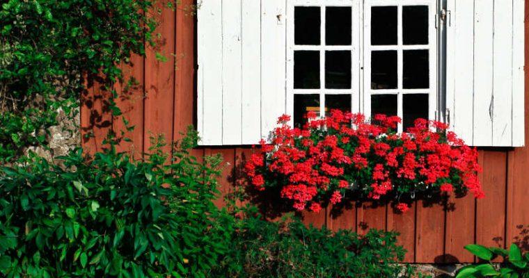 När är det bättre att renovera fönstren än att byta?